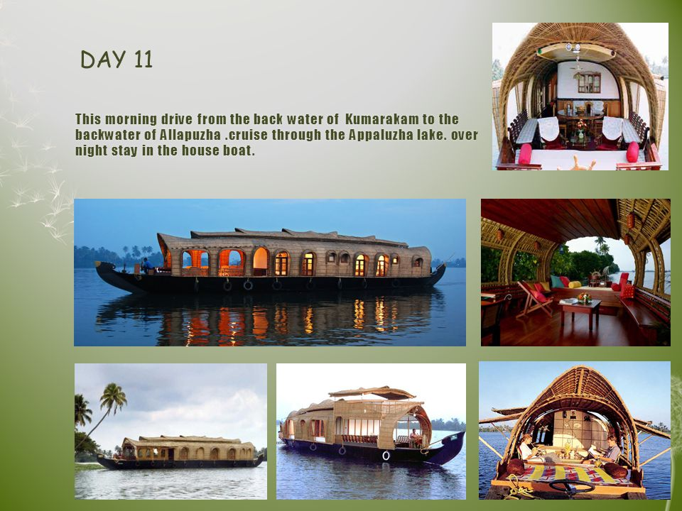 This morning drive from the back water of Kumarakam to the backwater of Allapuzha.cruise through the Appaluzha lake.