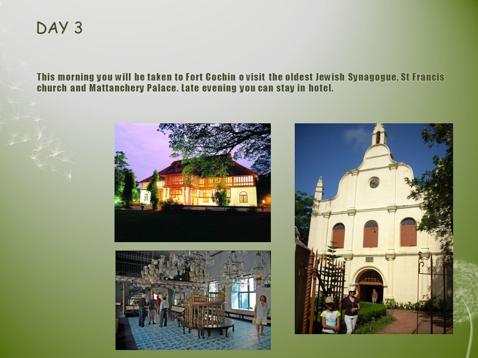 This morning you will be taken to Fort Cochin o visit the oldest Jewish Synagogue, St Francis church and Mattanchery Palace.