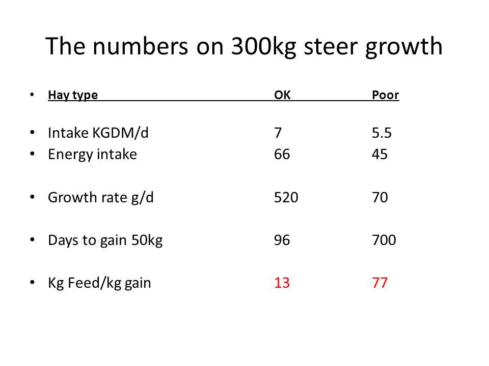 The numbers on 300kg steer growth Hay typeOKPoor Intake KGDM/d75.5 Energy intake6645 Growth rate g/d52070 Days to gain 50kg96700 Kg Feed/kg gain1377