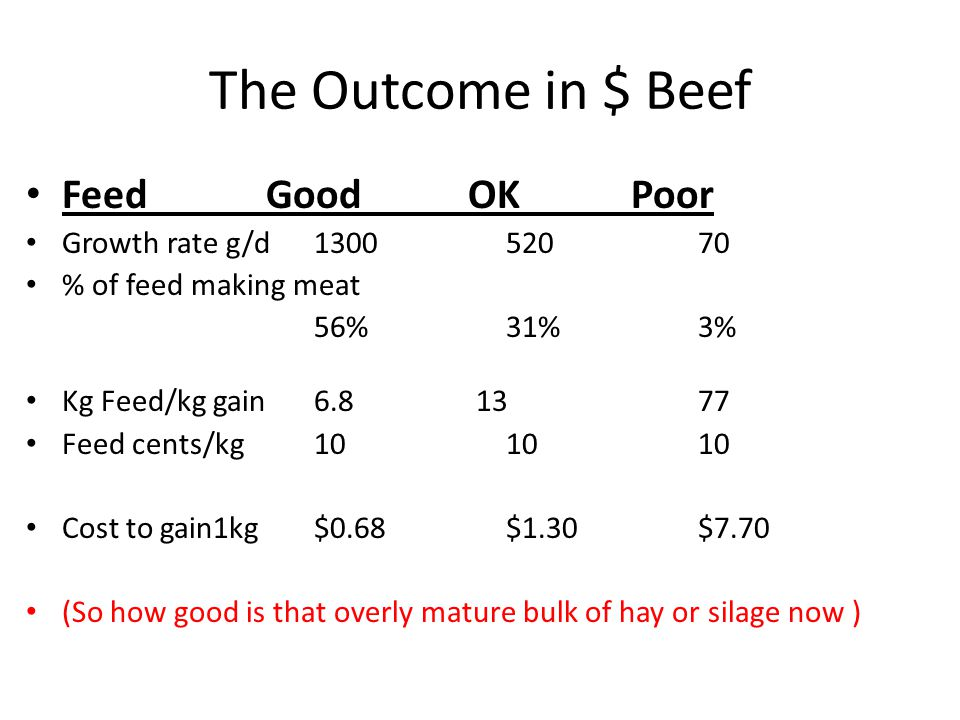 The Outcome in $ Beef Feed Good OK Poor Growth rate g/d130052070 % of feed making meat 56%31%3% Kg Feed/kg gain6.8 13 77 Feed cents/kg101010 Cost to g