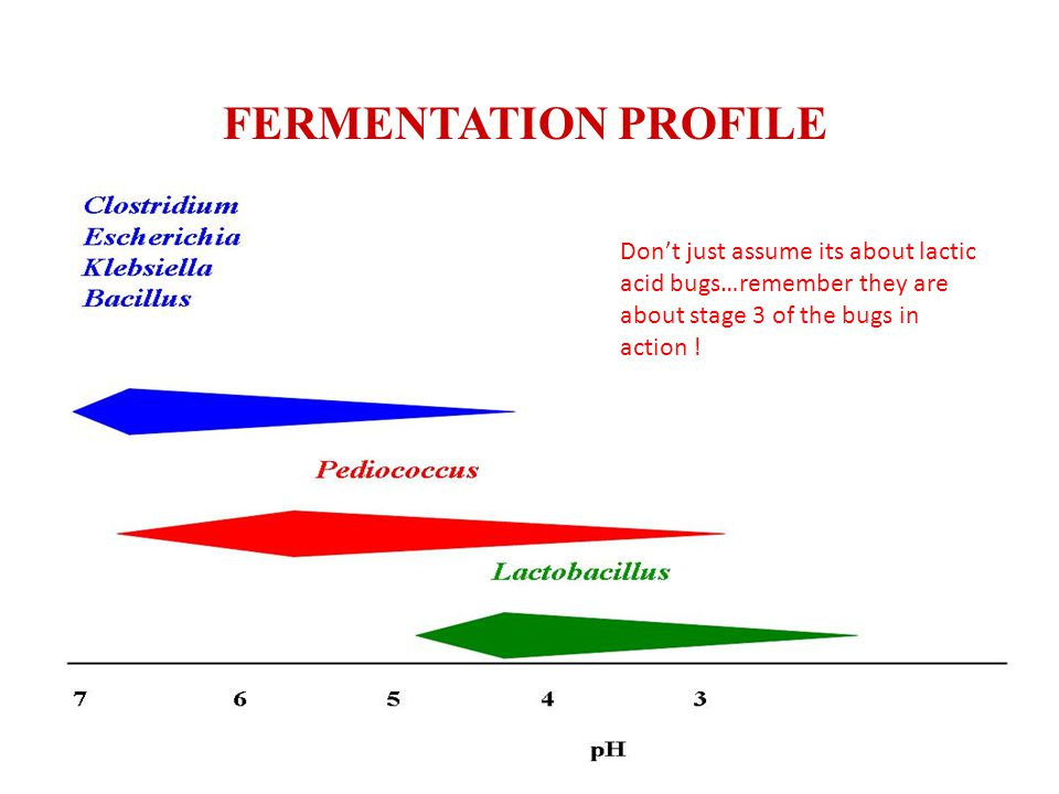 FERMENTATION PROFILE Dont just assume its about lactic acid bugs…remember they are about stage 3 of the bugs in action !