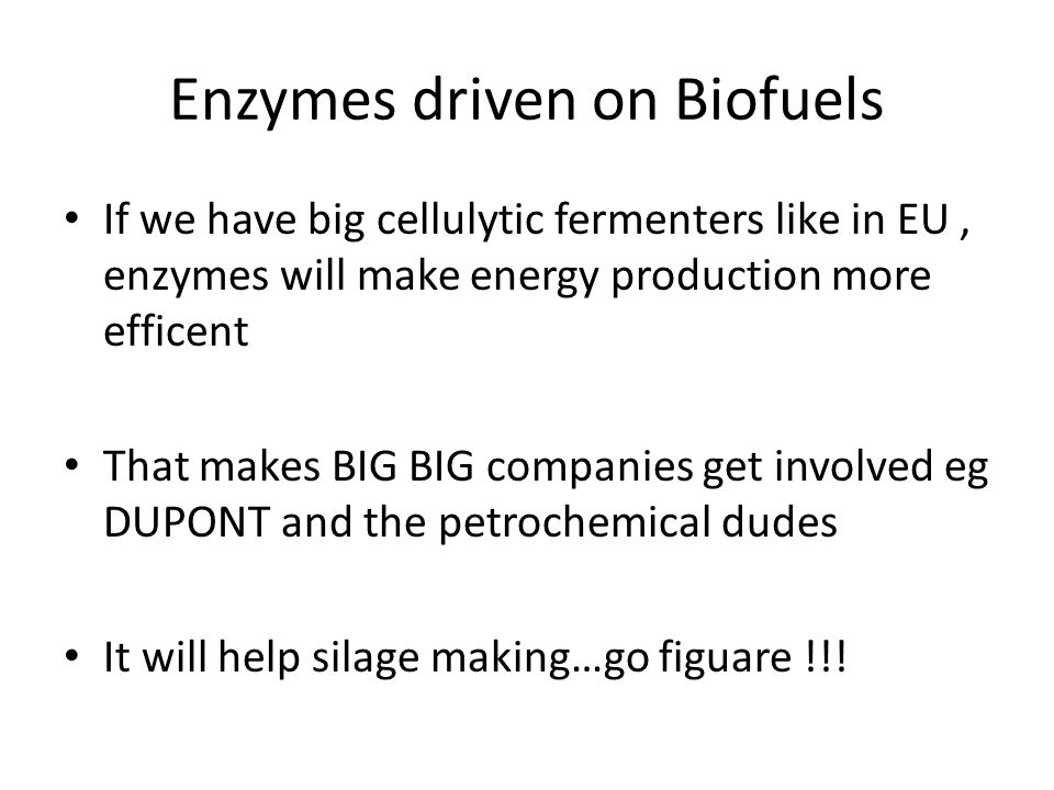Enzymes driven on Biofuels If we have big cellulytic fermenters like in EU, enzymes will make energy production more efficent That makes BIG BIG compa