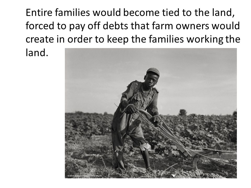 Entire families would become tied to the land, forced to pay off debts that farm owners would create in order to keep the families working the land.