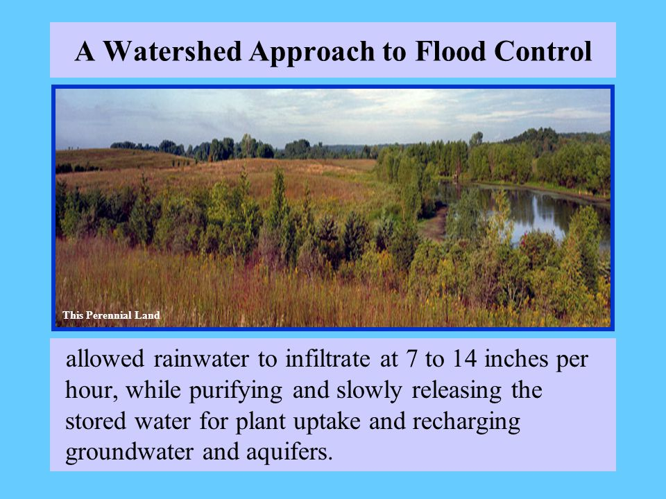 A Watershed Approach to Flood Control allowed rainwater to infiltrate at 7 to 14 inches per hour, while purifying and slowly releasing the stored water for plant uptake and recharging groundwater and aquifers.