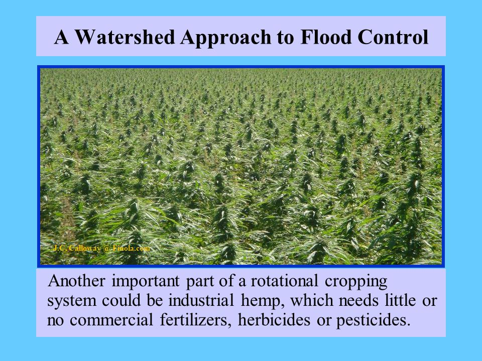A Watershed Approach to Flood Control Another important part of a rotational cropping system could be industrial hemp, which needs little or no commercial fertilizers, herbicides or pesticides.