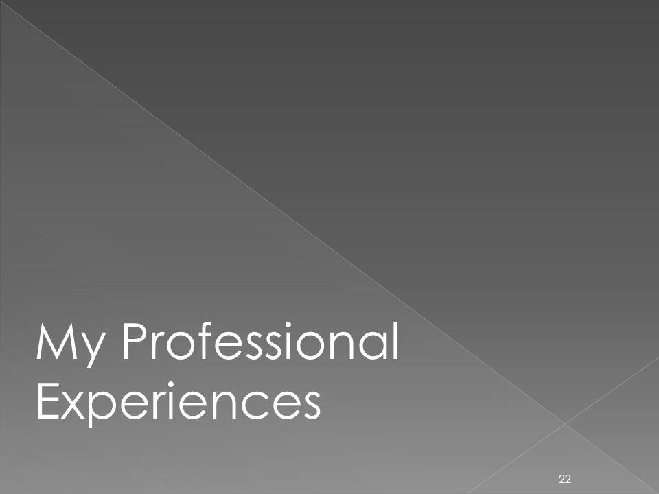 22 My Professional Experiences