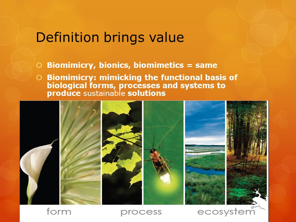 Definition brings value Biomimicry, bionics, biomimetics = same Biomimicry: mimicking the functional basis of biological forms, processes and systems to produce sustainable solutions