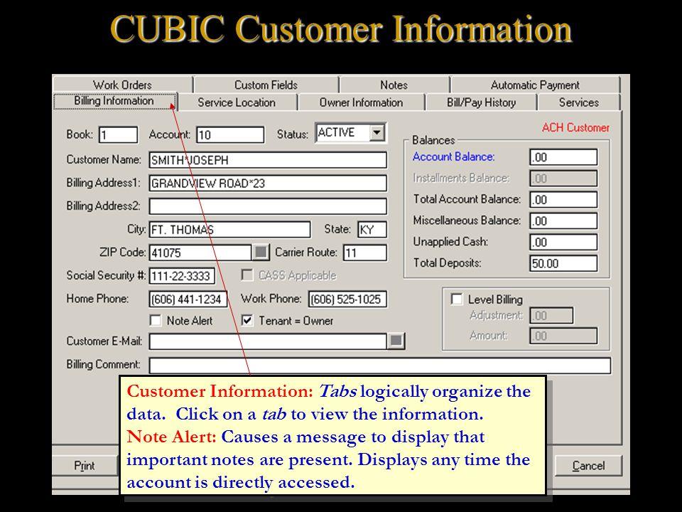 Customer Information: Tabs logically organize the data.