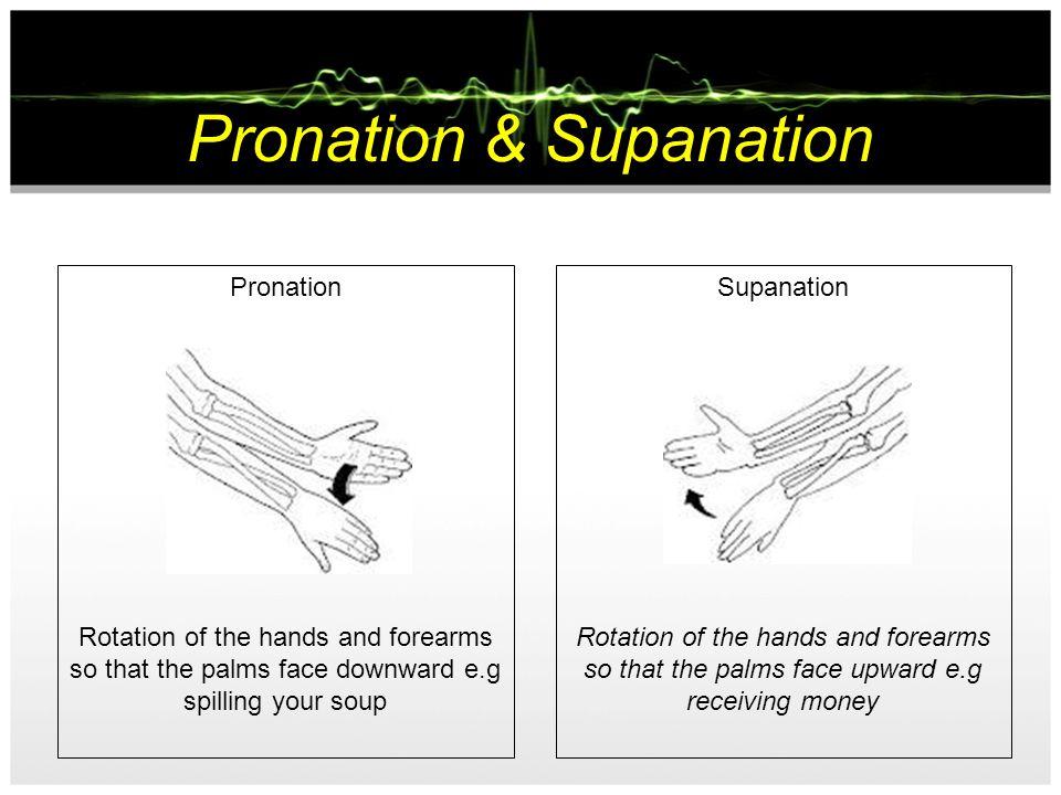 Rotation & Circumduction Rotation (forearm) the act of rotating, so the circular movement of the forearm Circumduction (arm/shoulder) Circular motion