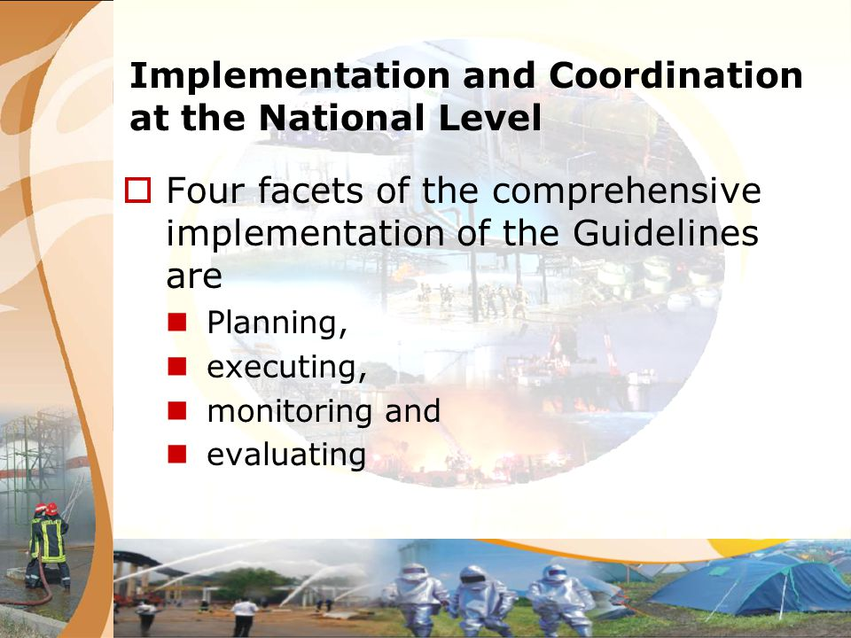 Implementation and Coordination at the National Level Four facets of the comprehensive implementation of the Guidelines are Planning, executing, monit