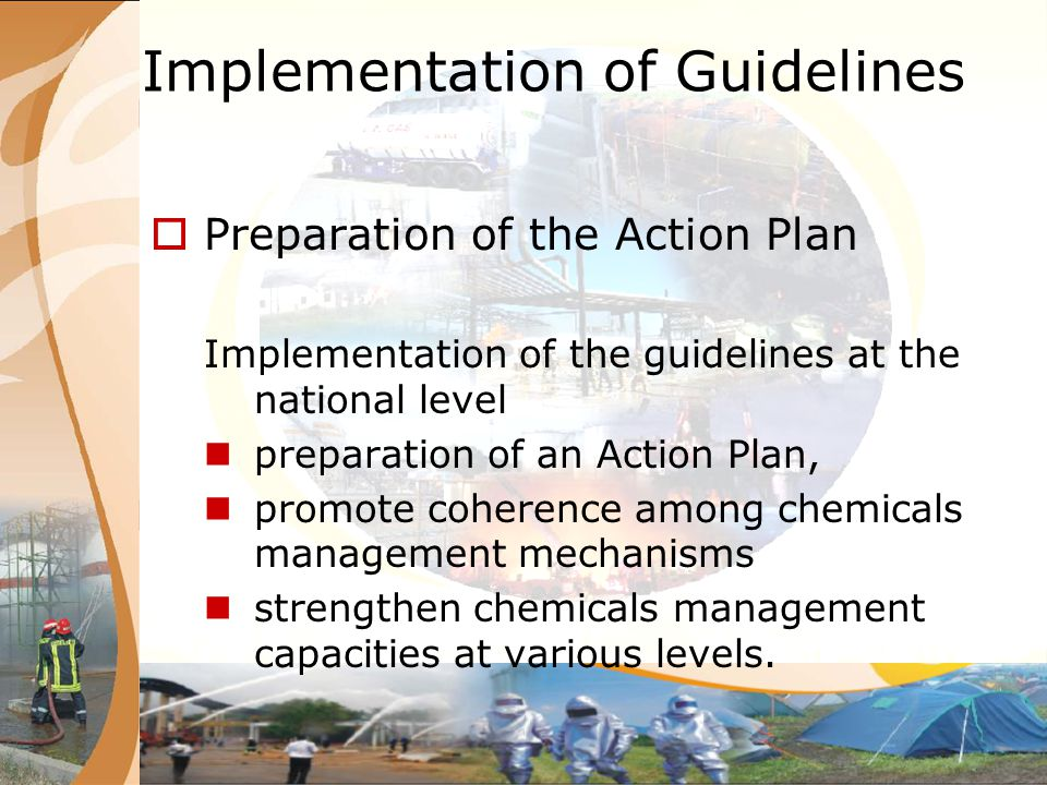Implementation of Guidelines Preparation of the Action Plan Implementation of the guidelines at the national level preparation of an Action Plan, prom