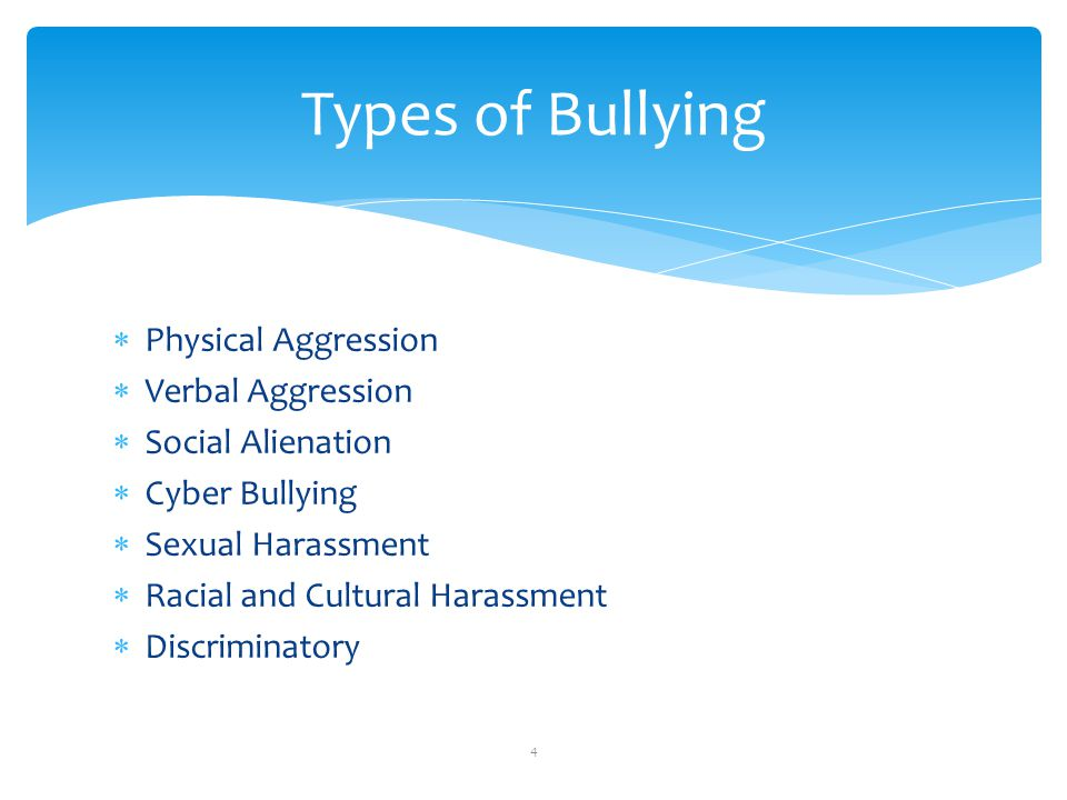Types of Bullying Physical Aggression Verbal Aggression Social Alienation Cyber Bullying Sexual Harassment Racial and Cultural Harassment Discriminato