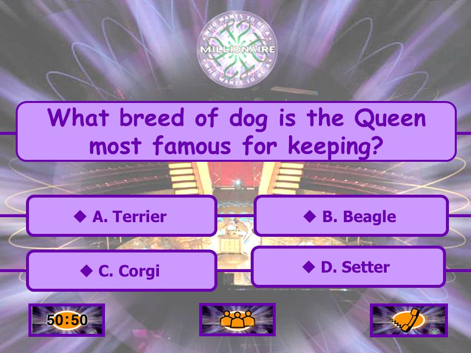 A. Terrier C. Corgi C. Corgi B. Beagle D. Setter What breed of dog is the Queen most famous for keeping?