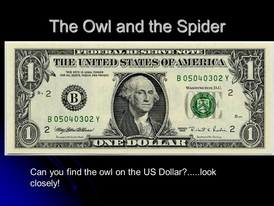 The Owl and the Spider Can you find the owl on the US Dollar?.....look closely!