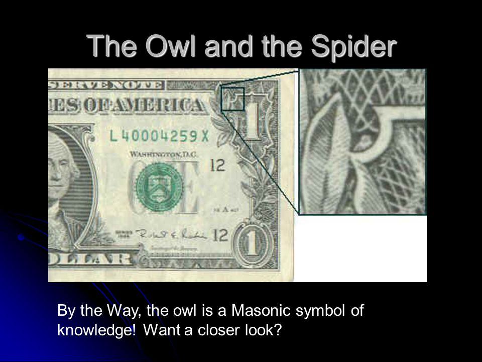 The Owl and the Spider By the Way, the owl is a Masonic symbol of knowledge! Want a closer look?