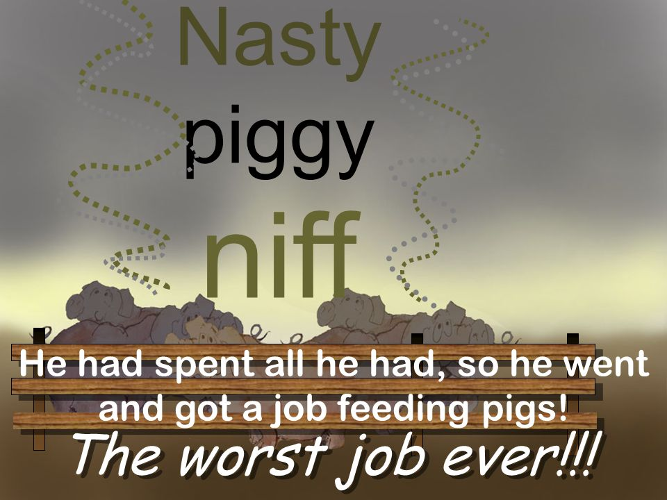 Nasty piggy niff The worst job ever!!! He had spent all he had, so he went and got a job feeding pigs!
