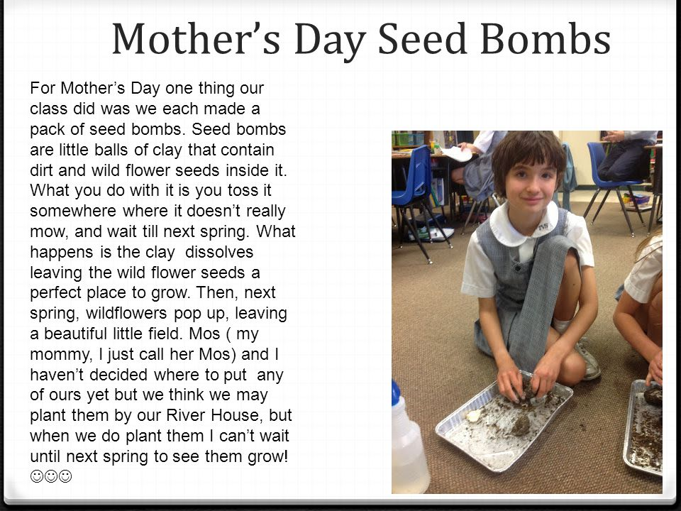 Mothers Day Seed Bombs For Mothers Day one thing our class did was we each made a pack of seed bombs.