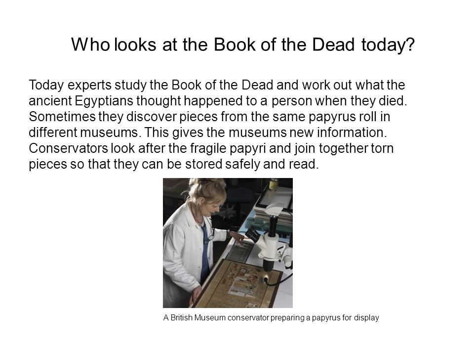 Who looks at the Book of the Dead today? Today experts study the Book of the Dead and work out what the ancient Egyptians thought happened to a person