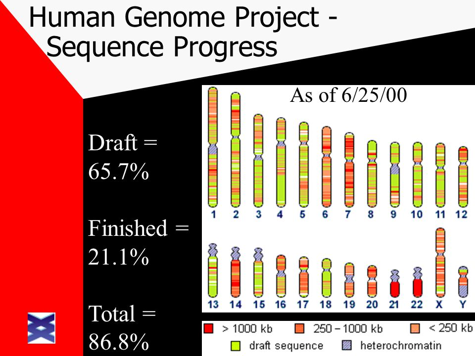 Human Genome Project - Sequence Progress Draft = 65.7% Finished = 21.1% Total = 86.8% As of 6/11/00 As of 6/18/00As of 6/25/00