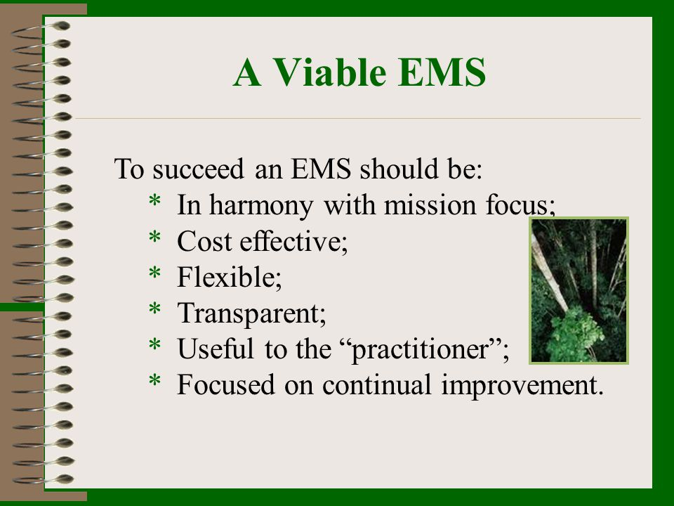 A Viable EMS To succeed an EMS should be: * In harmony with mission focus; * Cost effective; * Flexible; * Transparent; * Useful to the practitioner;