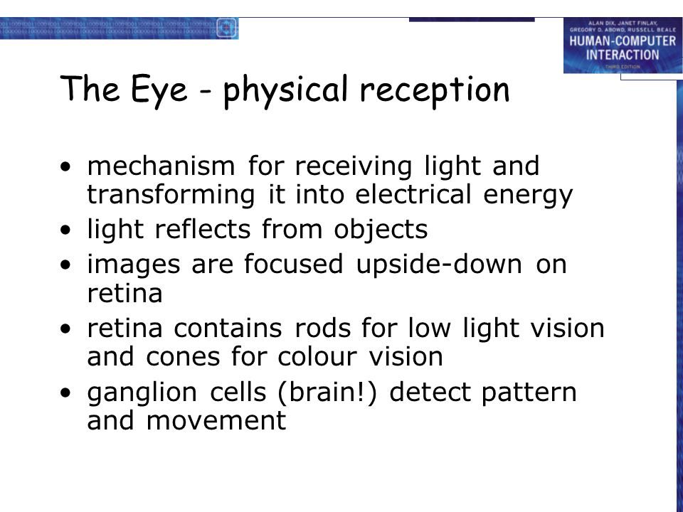 The Eye - physical reception mechanism for receiving light and transforming it into electrical energy light reflects from objects images are focused u