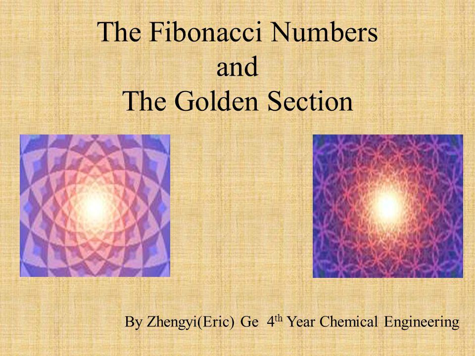 Bibliography http://www.mcs.surrey.ac.uk/Personal/R.Knott/Fibonacci/fib.html http://evolutionoftruth.com/goldensection/goldsect.htm http://pass.maths.org.uk/issue3/fiibonacci/ http://www.sigmaxi.org/amsci/issues/Sciobs96/Sciobs96-03MM.html http://www.violin.odessa.ua/method.html