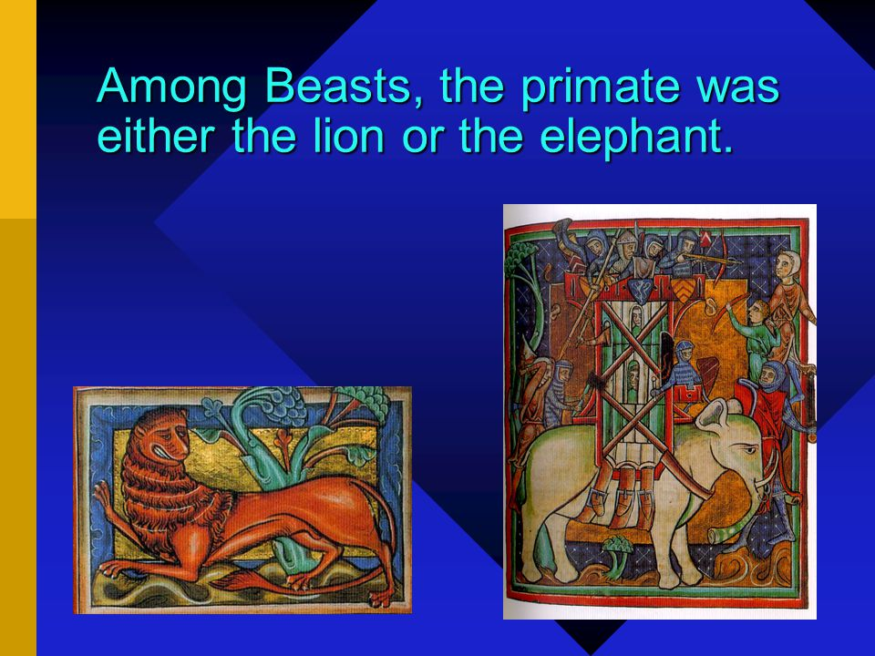 Noble Beasts But each animal, plant, fish, and mineral had its own king, a superior example of its own species. This creature was known as the Primate