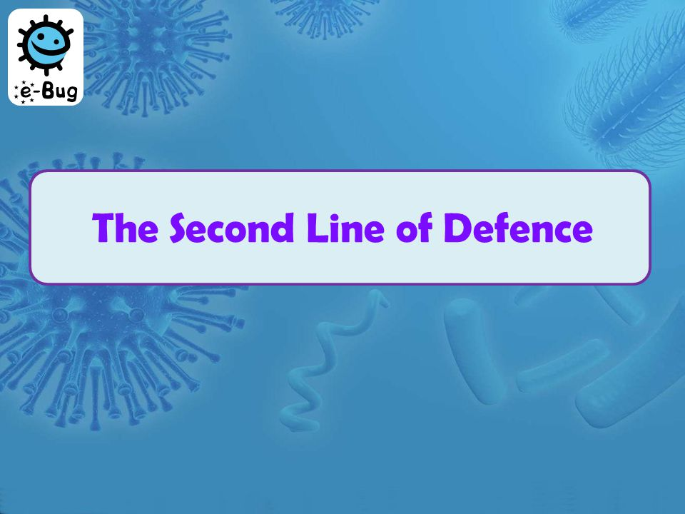 The Second Line of Defence