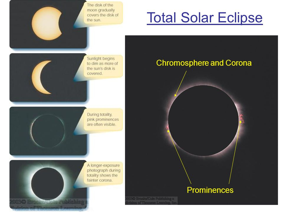 Total Solar Eclipse Prominences Chromosphere and Corona