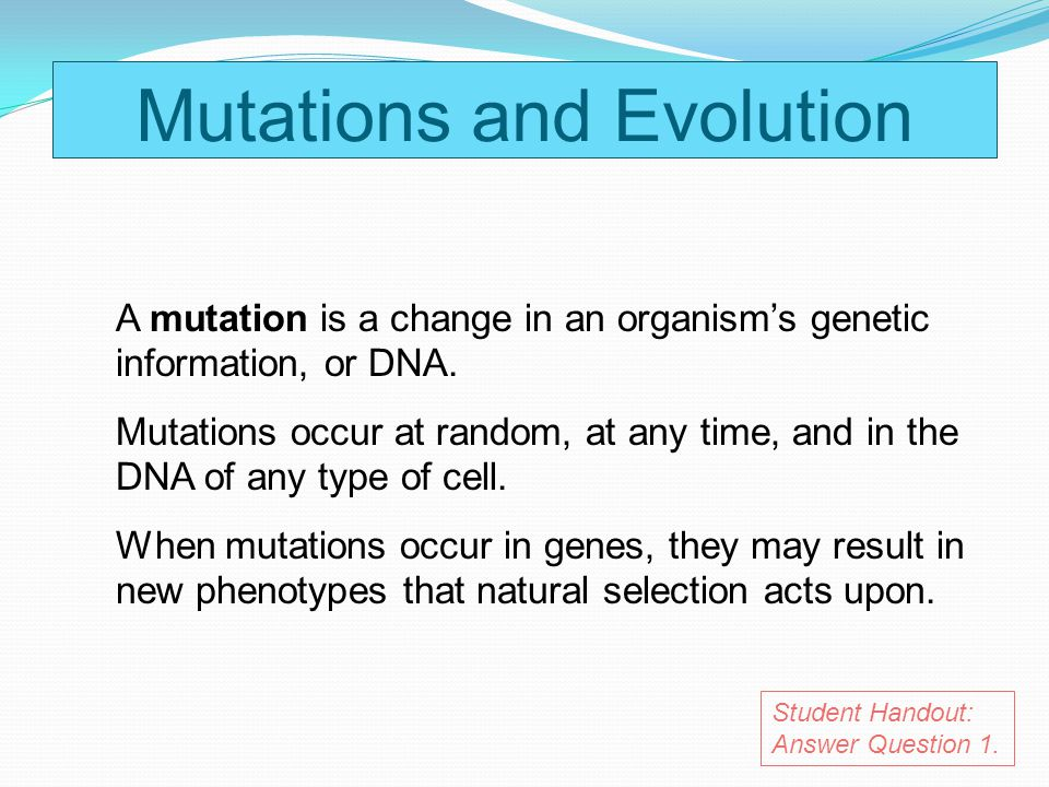 Mutations and Evolution A mutation is a change in an organisms genetic information, or DNA. Mutations occur at random, at any time, and in the DNA of