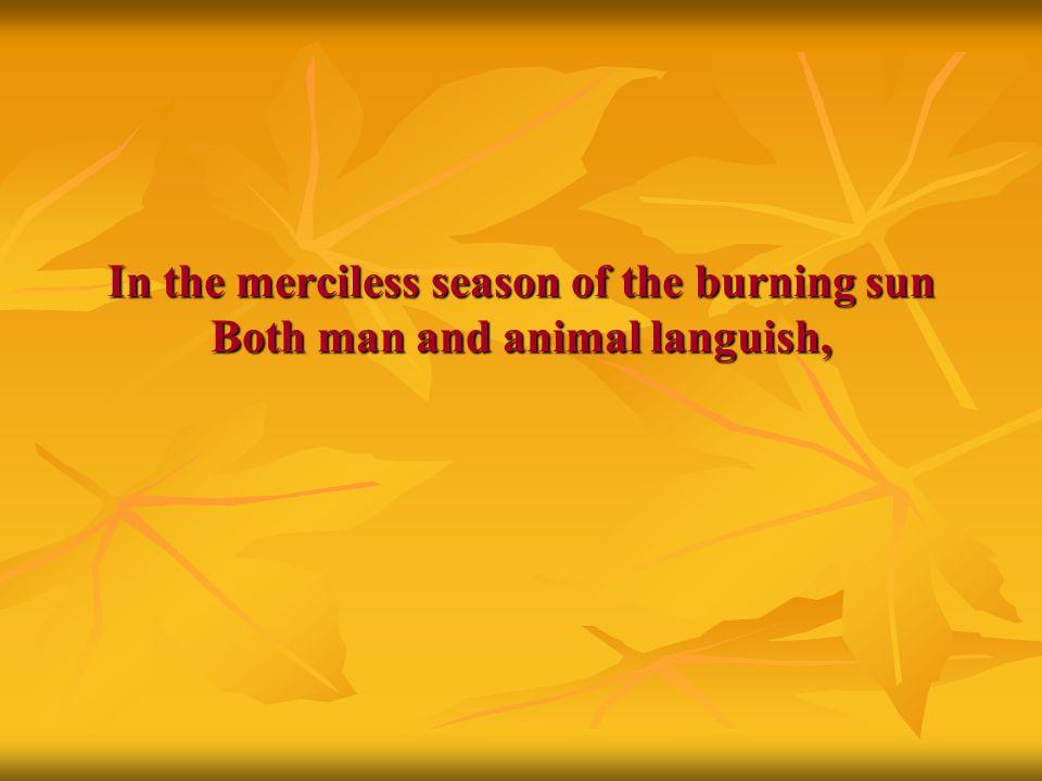 In the merciless season of the burning sun Both man and animal languish,