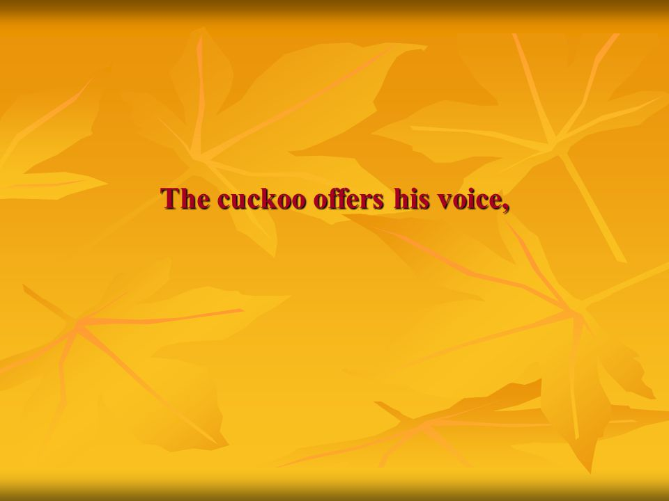 The cuckoo offers his voice,