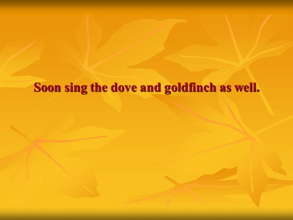 Soon sing the dove and goldfinch as well.