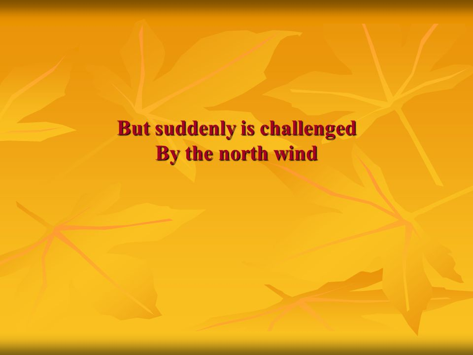 But suddenly is challenged By the north wind