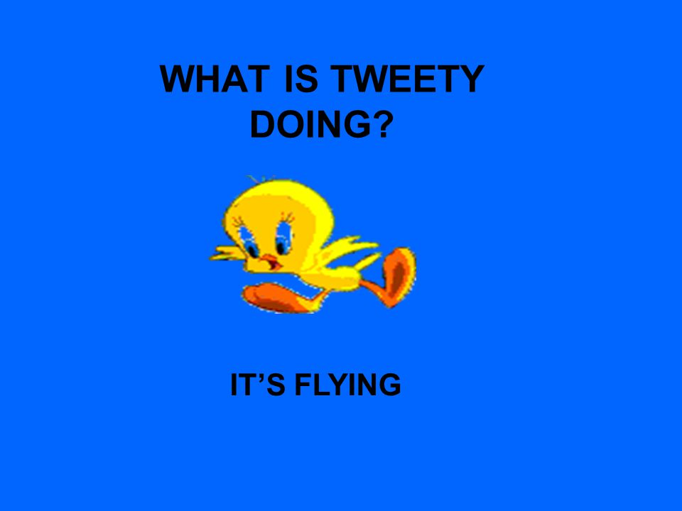 WHAT IS TWEETY DOING? ITS FLYING