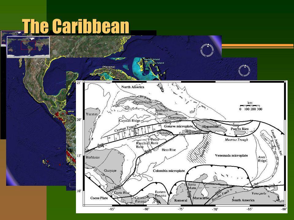 The Caribbean