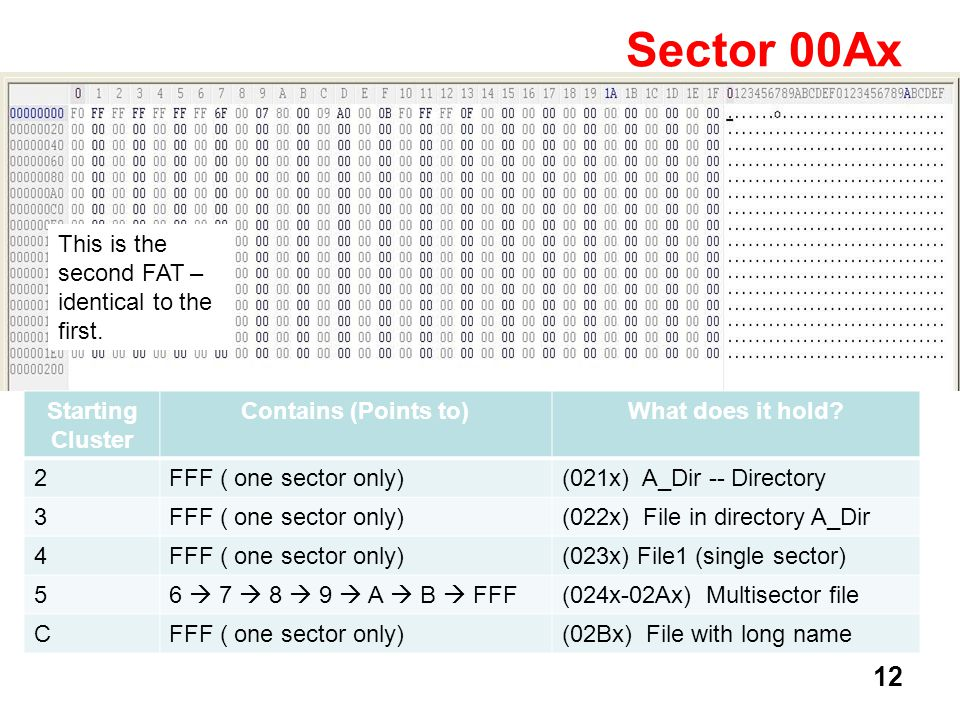 12 Sector 00Ax This is the second FAT – identical to the first. Starting Cluster Contains (Points to)What does it hold? 2FFF ( one sector only)(021x)
