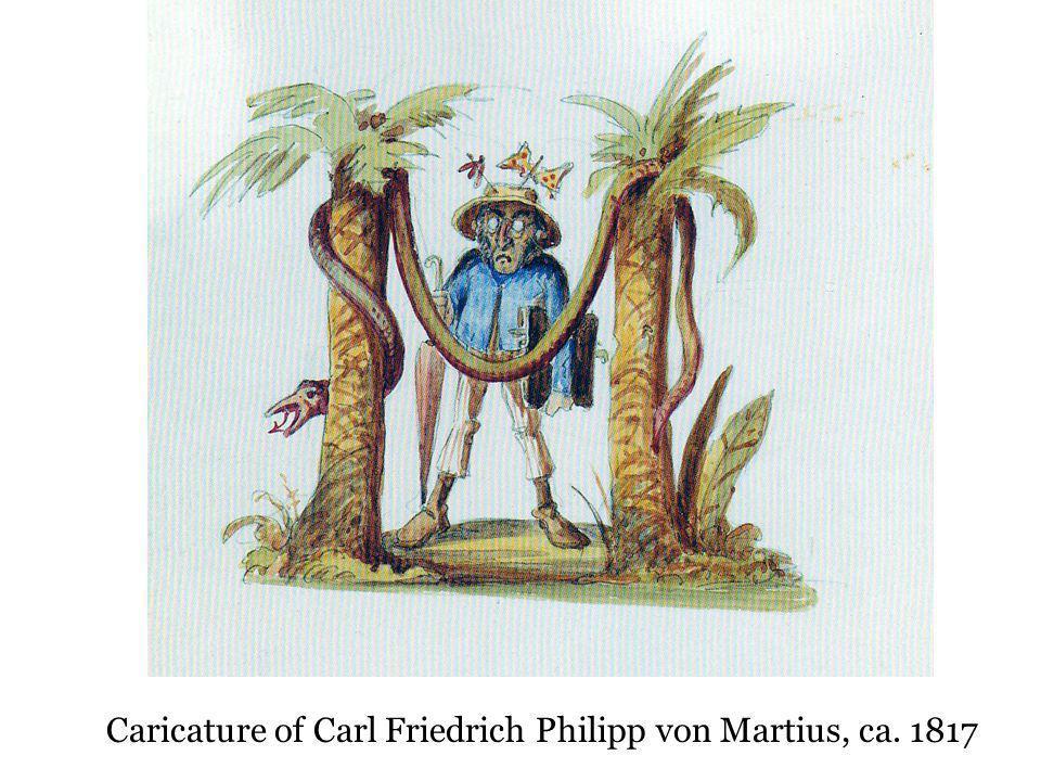 Caricature of Carl Friedrich Philipp von Martius, ca. 1817