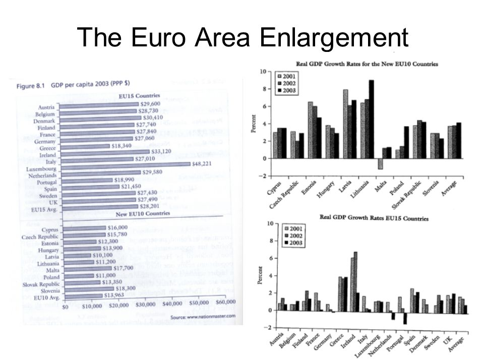 8 The Euro Area Enlargement