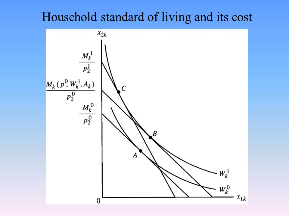 Household standard of living and its cost