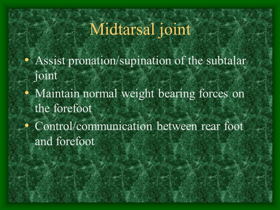 Midtarsal joint Assist pronation/supination of the subtalar joint Maintain normal weight bearing forces on the forefoot Control/communication between
