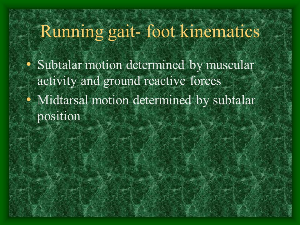 Running gait- foot kinematics Subtalar motion determined by muscular activity and ground reactive forces Midtarsal motion determined by subtalar posit