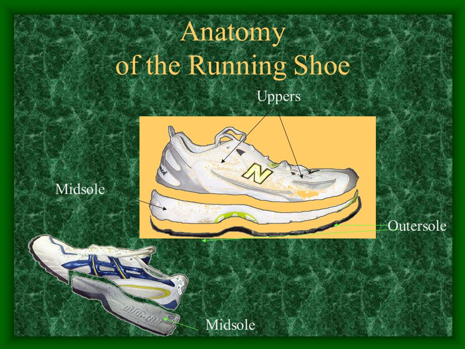 Anatomy of the Running Shoe Outersole Uppers Midsole