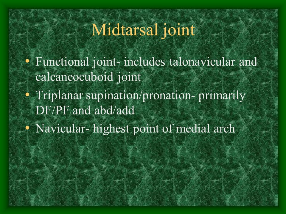 Midtarsal joint Assist pronation/supination of the subtalar joint Maintain normal weight bearing forces on the forefoot Control/communication between rear foot and forefoot