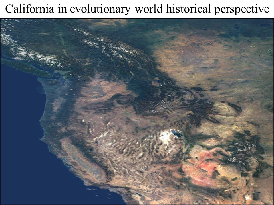 California in evolutionary world historical perspective