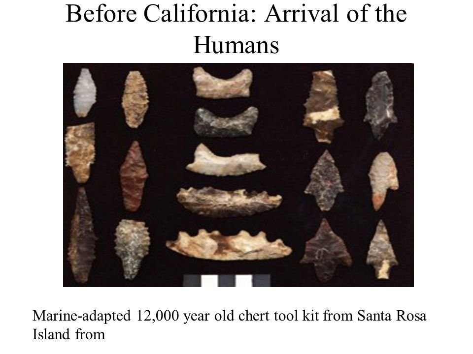 Before California: Arrival of the Humans Marine-adapted 12,000 year old chert tool kit from Santa Rosa Island from
