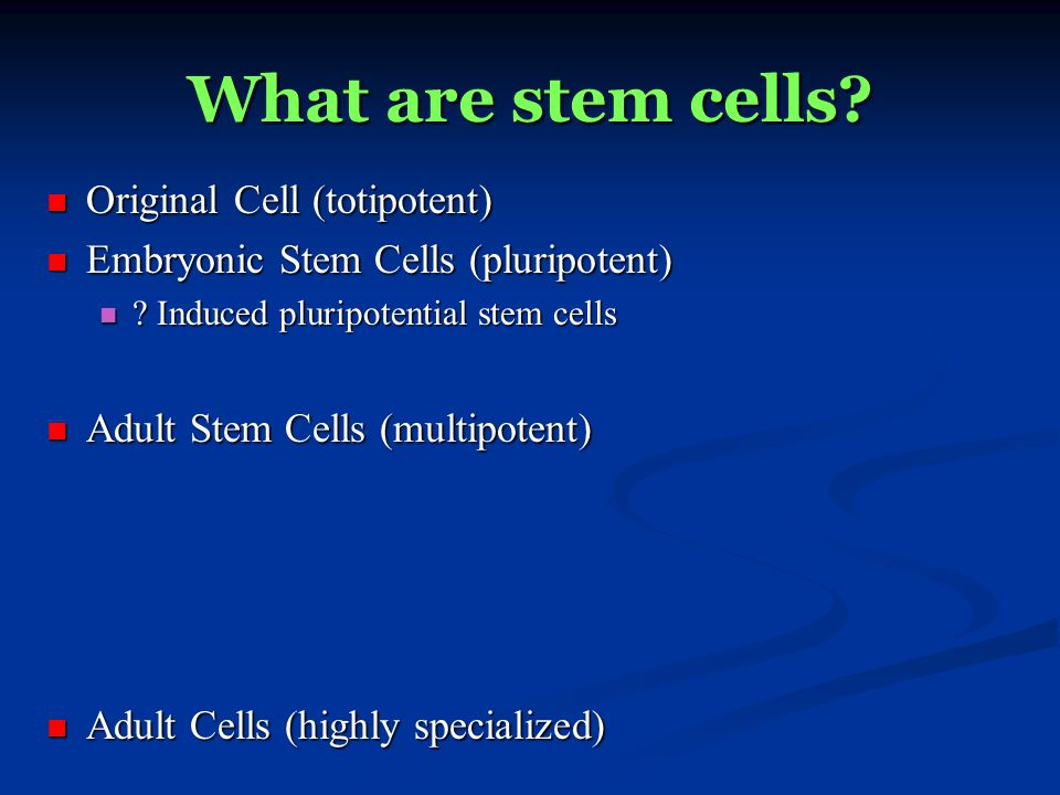 Why are stem cells important.