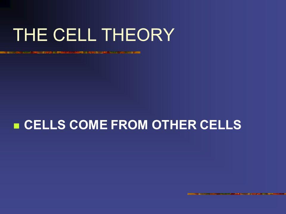 THE CELL THEORY CELLS COME FROM OTHER CELLS