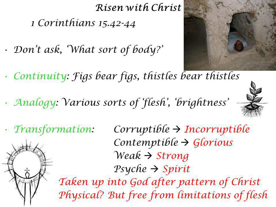 Risen with Christ 1 Corinthians 15.42-44 Dont ask, What sort of body.