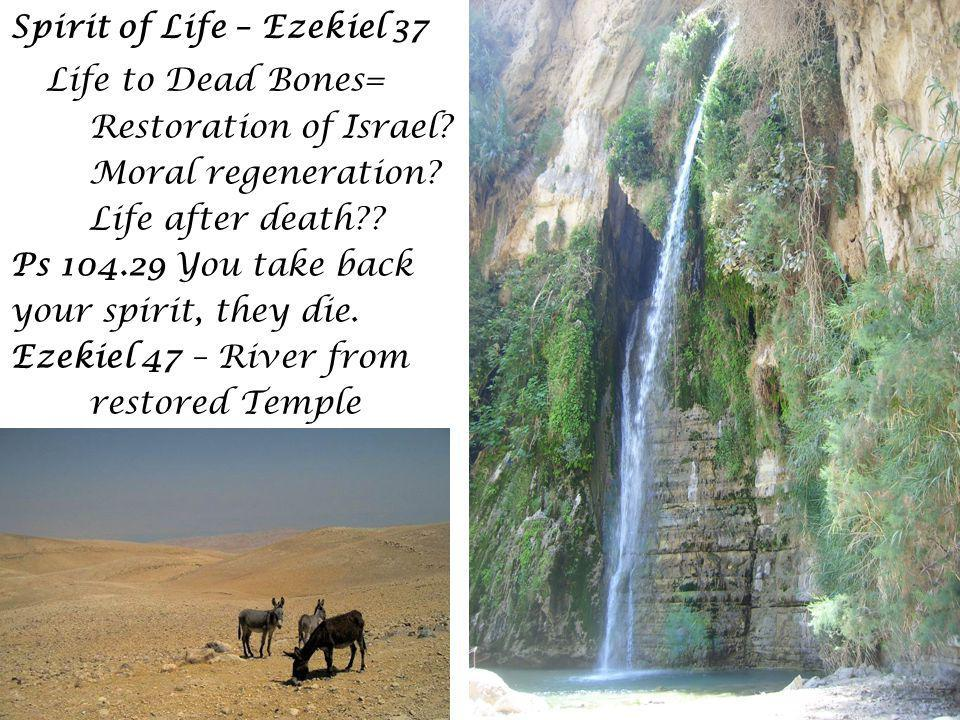 The messianic Spirit in Jesus Baptism Eschatological heaven-opening Apocalyptic Voice Quotes Isaiah 42.1 Descent of the Spirit (Luke removes John the Baptist to prison) Synagogue at Nazareth The Spirit-filled prophet, as Widow of Naim Death in Jerusalem Laments over Jerslm Preaching in Temple Ascension